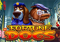 Fortune Dogs